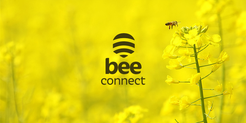 logo Bee Connect